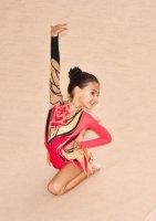 Победа мирнинских гимнасток: гармония пластики, костюмов и музыки