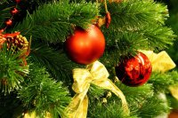 Анонс мероприятий в дни Новогодних праздников