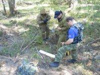 Найденные гранаты обезврежены