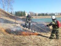 Об установлении особого противопожарного режима на территории Архангельской области