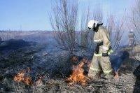 На территории Архангельской области установлен особый противопожарный режим