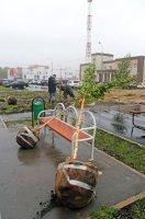 Озеленение нового микрорайона