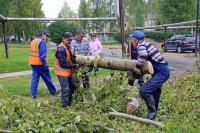 В Мирном началась сезонная обрезка деревьев