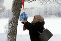 Экологическая акция «Накормите птиц зимой»