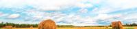 """""""Вологодский гектар"""" - возможность получить землю бесплатно"""