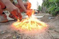 Как предотвратить пожар в период цветения тополиного пуха