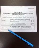 Голосования по выбору общественных территорий, подлежащих благоустройству в 2021 году