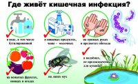 ОСТОРОЖНО - кишечные инфекции!