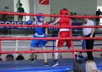 В Мирном впервые прошел турнир по боксу на призы Валерия Харитонова