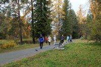 В Мирном впервые отметили Всероссийский день ходьбы